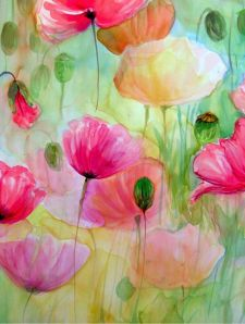 Evelyn Antonyses - Poppies